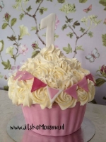 Cake Smash Friesland_10