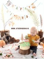 cakesmash smash the cake friesland_2