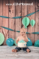 smash the cake_9